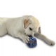 Interactive Dog Toys